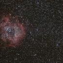 Widefield Rosette nebula,                                mlewis