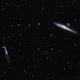 NGC 4656, NGC 4631 (Hockey Stick & Whale Galaxies),                                gfryhof
