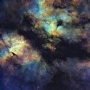 IC 1318 - SHO,                                Daniel DeSclafani
