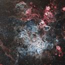 Tarantula Nebula Area-30 Doradus/NGC 2070,                                Tom Peter AKA Ast...