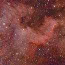 NGC 7000,                                Robert Dick