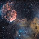 Jellyfish nebula IC 443 & LDN 1565,                                Enrique Arce