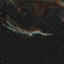 Witch's Broom Nebula (NGC6960),                                Tom L