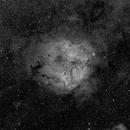 Elephant's Trunk Nebula - IC 1396,                                Jim Matzger