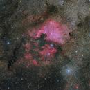 North America Nebula/NGC 7000, Pelican Nebula,                                1074j
