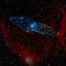 """Sh2-129 """"Squid Nebula"""" in Cepheus - HO RGB,                                Daniel.P"""