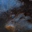 Pelican nebula,                                Rolandas_S