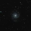 M74,                                Richard Cardoe