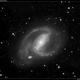 NGC 1097,                                Roger Groom