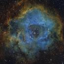 Rosette from Deep Sky West,                                jerryyyyy