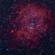 Rosetten-Nebel,                                norbertbuchta
