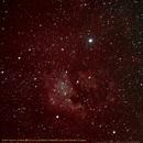 North America Nebula NGC7000 and Pelican Nebula IC5070 with Deneb in Cygnus,                                Hans-Peter Olschewski