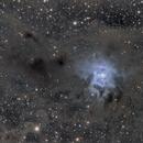NGC7023,                                Frederic_fr