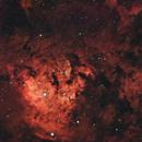 NGC 7822,                                Valerio Avitabile
