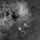 IC410 - Tadpoles in mono,                                Sara Wager