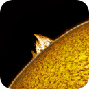 Solar Prominence 12/29/2020,                                Jim Matzger