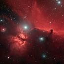 Horsehead and Flame Nebula,                                pterodattilo