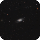 The NGC 2903 galaxy in Leo,                                Francesco Meschia