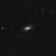 The NGC 2903 galaxy in Leo,                                Francesco Meschia
