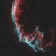 Eastern Veil (NGC 6992),                                pete_xl