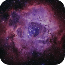 The Rosette Nebula,                                Michael Feigenbaum