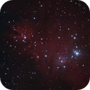 Cone Nebula,                                André