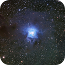 NGC 7023 Iris Nebula,                                Wembley2000