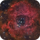 Rosette Nebula - closeup with open cluster NGC 2244,                                Michael S.