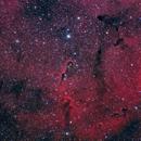 IC1396, Elephant Trunk Nebula in HaLRGB form Negev Desert,                                Leo Shatz