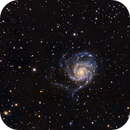 M101,                                Roger Bertuli