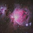 M42 Nebula,                                Sajad Asghari