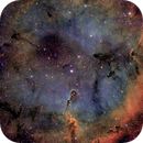 Elephant Trunk Nebula IC1396,                                Finn