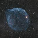 Oh My Gourd; Gourd Nebula SH2-308,                                Uri Abraham