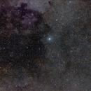 Deneb - Cygnus Region,                                Bill