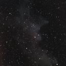 Witch Head Nebula,                                  drivingcat