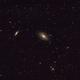 M 81, M82, NGC 3077, NGC 2976,                                mario_b
