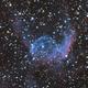 Thor's Helmet, NGC 2359 at 23 degrees elevation,                                Albert van Duin