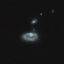 NGC 4774,                                Gary Imm