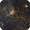 IC 417 - Spider, Fly and probably Ant,                                Jens Zippel