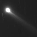 Komet Lovejoy am 26.11.2013,                                Michael Schröder