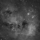 TadPoles Nebula (IC410) close up in Hα,                    Jose Carballada