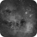 TadPoles Nebula (IC410) close up in Hα,                                Jose Carballada