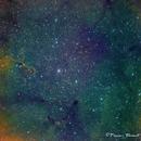 IC 1396 Elephant Trunk Nebula,                                  Francois Theriault