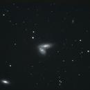 NGC4568 + Supernova SN 2020fqv,                                Chris Davis