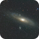 M31 RGB with ASI183MM/Samyang 135,                                Ben
