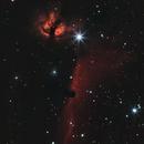 horsehead nebula, rough PA, canon 200 mm F2.8 L + 2x teleconverter,                                Julio Hechavarria