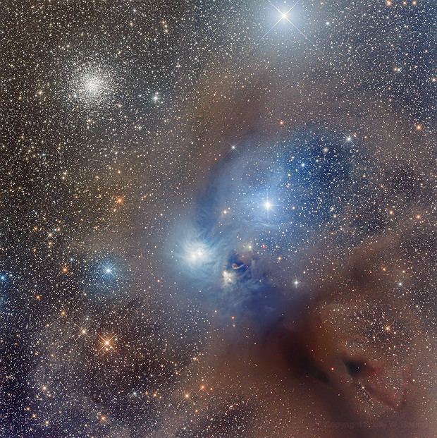 NGC 6729, NGC 6723, Dust, and More,                                Scotty Bishop