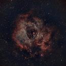 Rosette Nebula: HaRGB with OSC,                                NetDoc