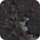 IC-2118 Nebulosa cabeza de bruja (Witch head nebula),                                Alfredo Beltrán
