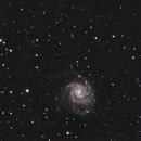 last m101 of  2014 - reprocessed based on image of Acuter 90-900ed,                                Stefano Ciapetti